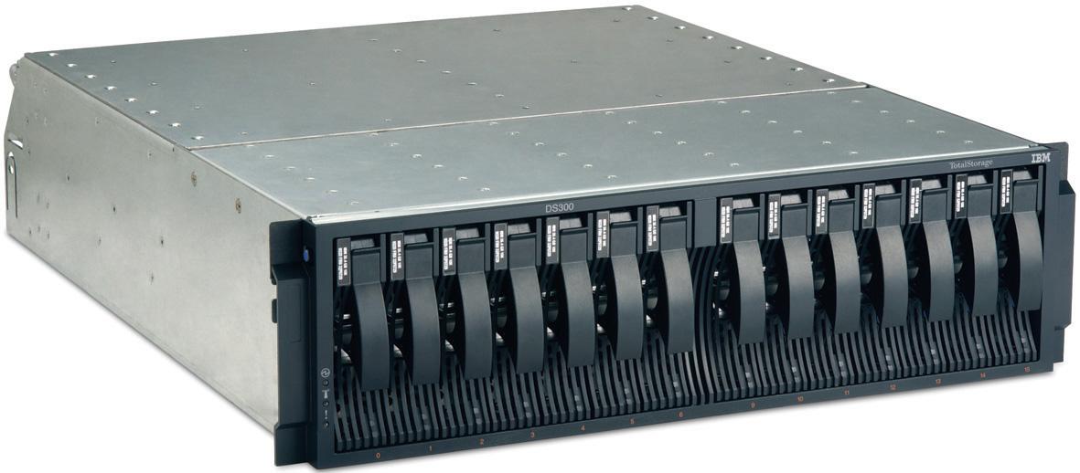 IBM DS300 IBM TotalStorage DS300